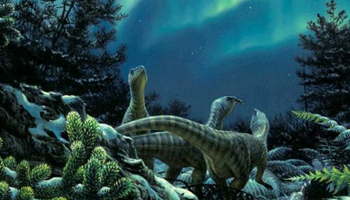 Dinosaurs Used To Live In Antarctica